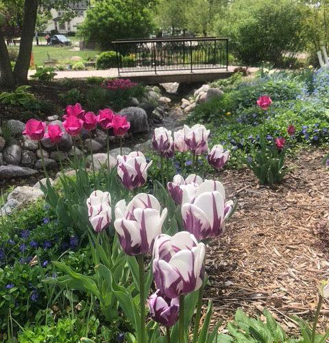 gardens-spring