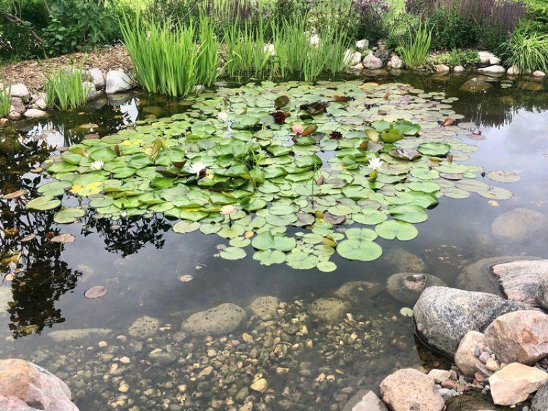 Victorian Pond Garden at Central Gardens of North Iowa